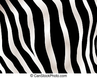 stripped zebra background - Black and white stripped zebra...