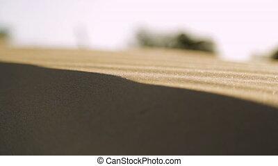 Strips In The Sand, Qld Island, Australia
