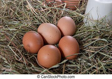 stro, fris, eitjes, organisch