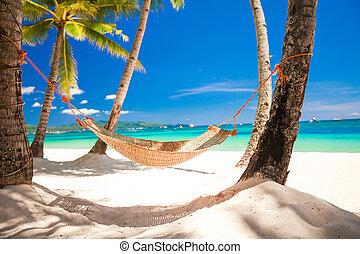 stroh, tropische , hängemattte, handfläche, see schatten,...