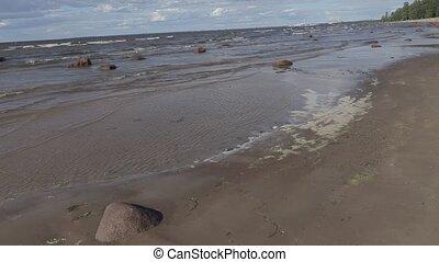 stroll along the coast of the Baltic Sea on a sunny summer...