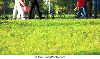 Stroll in the park. Green lawn grass.