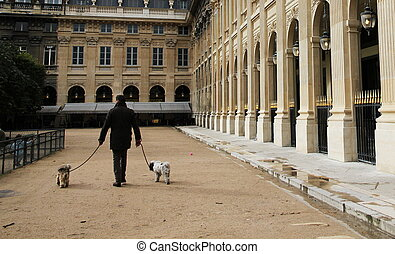 Stroll - man walks with the dogs in the Tuileries Gardens