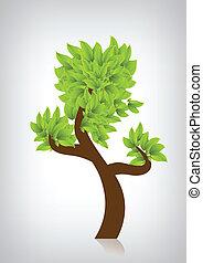 strom, s, nezkušený, leafage