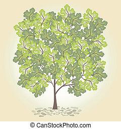 strom, s, nezkušený, leafage., vector.