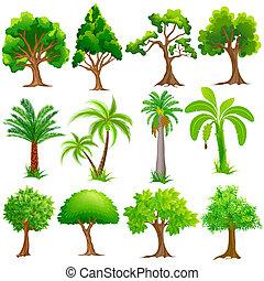 strom, vybírání