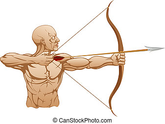 Strong archer with bow and arrow - Illustration of strong...
