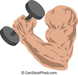 Strong arm - Muscular arm grasping a barbell