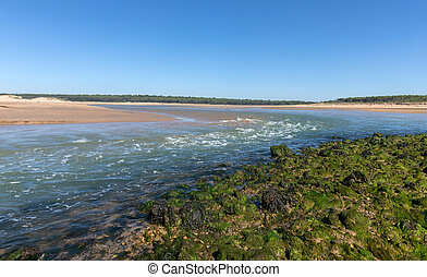Strong current on estuary