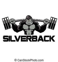 Strong gorilla silverback