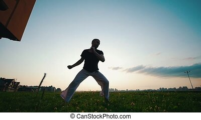Strong hardy man dances capoeira on the grass on a summer...