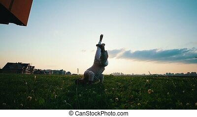 Strong man trains on the grass and shows capoeira dance in...