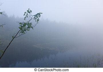 Strong morning fog