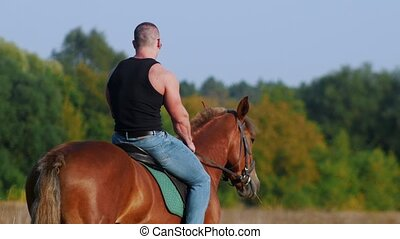 Strong muscular man in black t-shirt and sunglasses riding a horse in a field, moving away from the camera