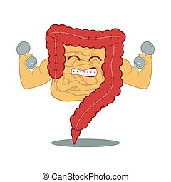 Strong power intestines with dumbbell. Human gastrointestinal tract. Digestive system
