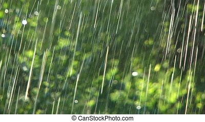 Strong rain - Two frame. There is heavy rain.