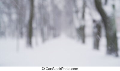 strong snowfall on alley in town with blurred background, uhd prores footage