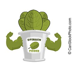 Strong spinach tin. Powerful herbs for muscle growth. Bank...