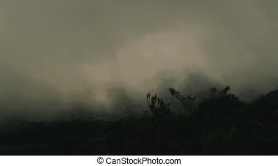 Strong Winds And Moving Clouds In Trapanti National Park,...