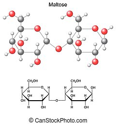 Structural chemical formula and model of maltose