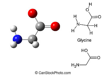 Structural model of glycine molecule