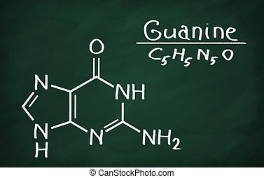 Structural model of Guanine