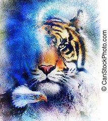 structure., eagle., achtergrond, sinaasappel, kleur, ornament, abstract, color., tiger, concept, papier, black , dier, ouderwetse , verticaal, oog, contact., witte , blauwe