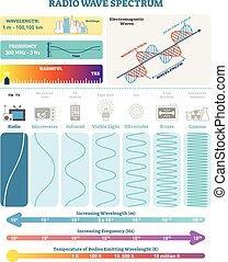structure., harmfulness, spectrum., eletromagnético, waves:, ilustração, onda, diagrama, frequência, vetorial, rádio, comprimento onda
