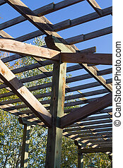 structure of wood for climbing plants