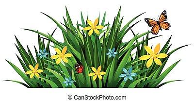 struik, met, bloemen, en, insecten