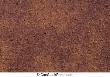 struktur, av, brun, läder