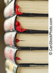 struktur, av, två, läder, förgylld, tooled, årgång, böcker