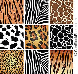 strukturer, skinn, djur