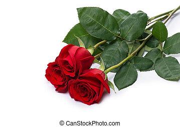 strzyżenie, kwiat bukiet, róża, odizolowany, included, ścieżka, biały czerwony