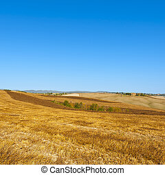 Tuscany landscape after harvest