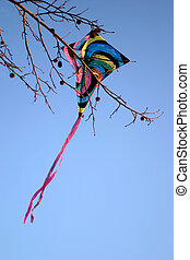 Stuck - A kite caught in a gumball tree.