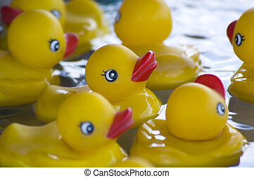 Stuck up duck - yellow rubber stuck with nose, beek up in...