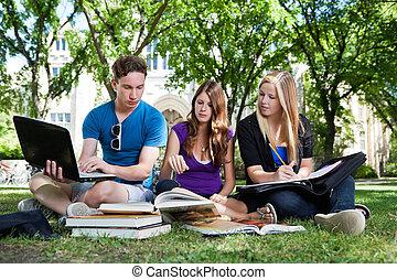 studenci, badając, grupa razem