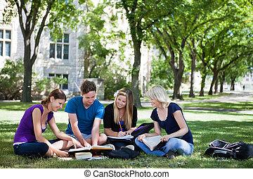 studenci, badając, kolegium, razem