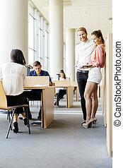 studenci, badając, młody, razem