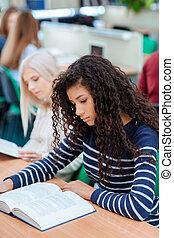 studenci, klasa, czytanie książka