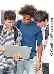 studenci, laptop komputer, grupa
