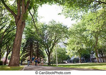 studenci, pieszy, grupa, uniwersytecki obręb szkoły