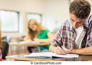 student, med, andra, skrift antecknar, in, klassrum