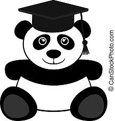 student, niedźwiedź
