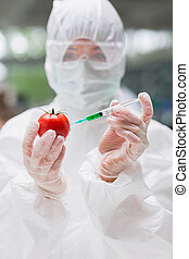 Student standing at the laboratory injecting a tomato