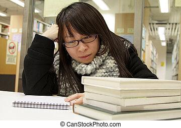 student, universiteit, aziaat, bibliotheek