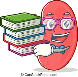 Student with book kidney mascot cartoon style vector...