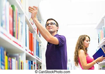 studente università, biblioteca, bello
