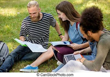 studenten, hometasks., zusammen, arbeitende , freudig